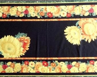 Sunshower Craft Panel