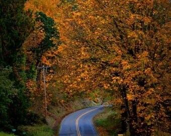 Scappoose in the fall