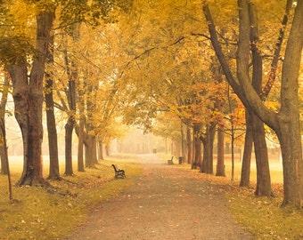 Little mist ...Signed photograph, original artwork, high resolution.