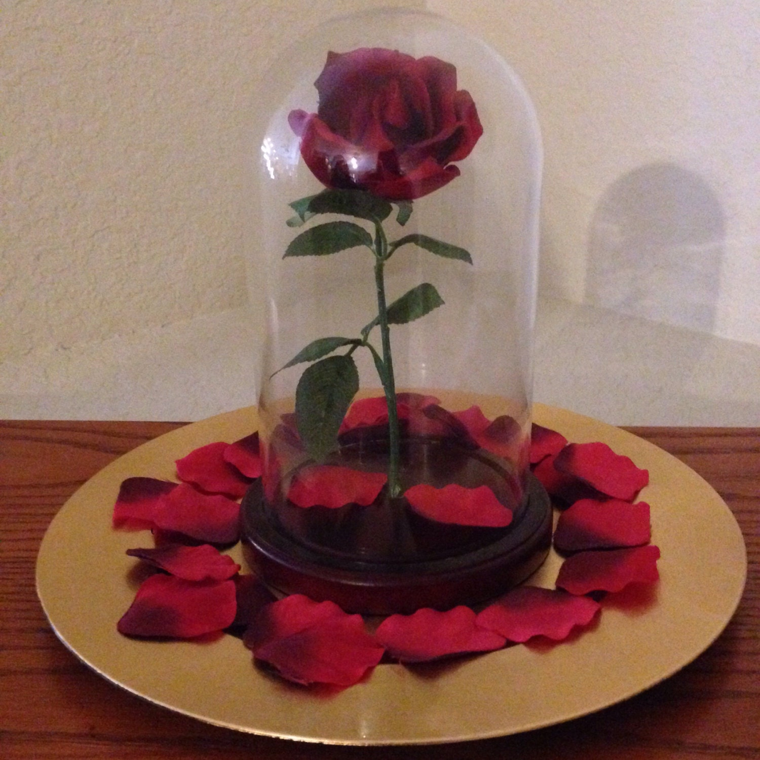 Enchanted rose in glass dome inspired by beauty and the for Rose under glass