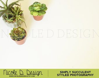 Simply Succulents - Stock Photography