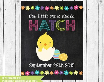 Easter Pregnancy Announcement, Little one ready to hatch pregnancy announcement, Pregnancy Reveal, DIY edit with ADOBE READER