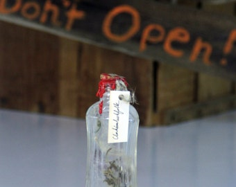 Small Spooky German Spirit Bottle Holding Scary Folk Spirits Upcycled Found Glass Bottle