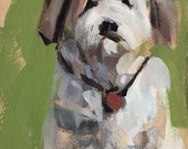 Dog Art Print Shih Tzu Portrait - Shih Tzu by David Lloyd