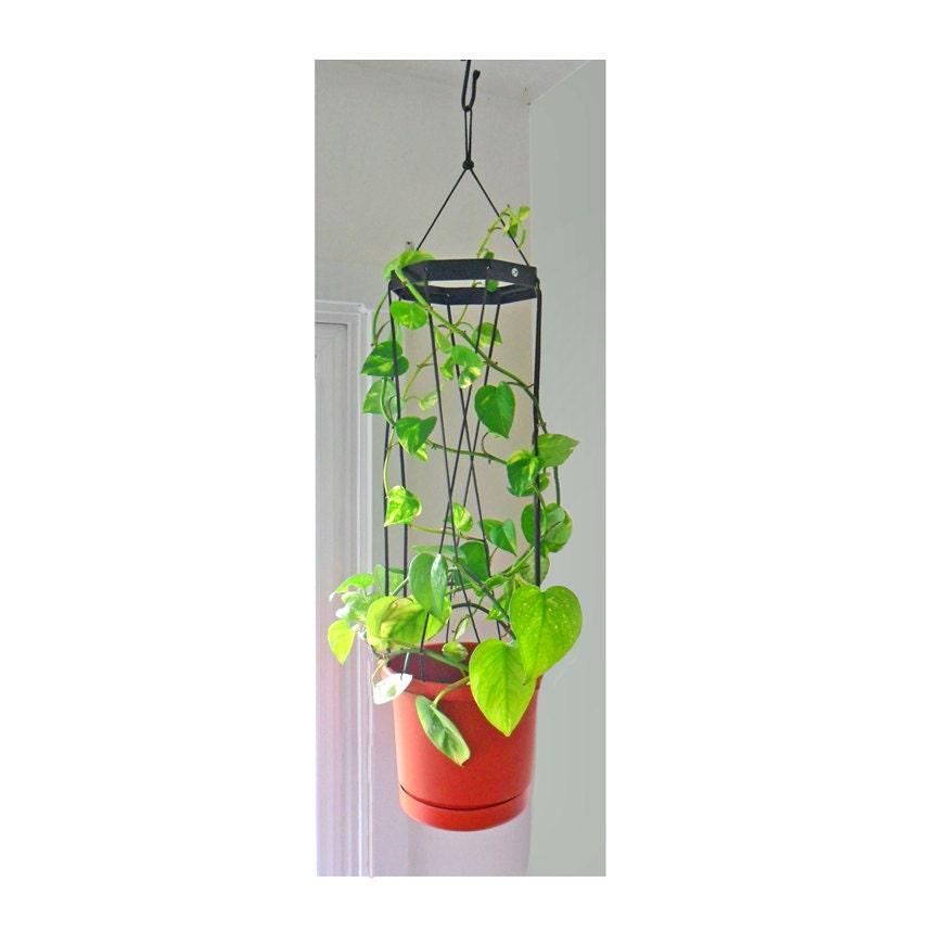 Indoor Hanging Planter Trellis Combination