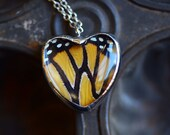 Real Butterfly Wing Necklace Monarch Heart Glass Jewel Danaus plexippus