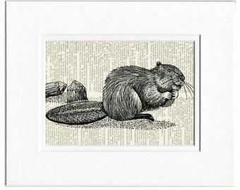 Beaver dictionary page print