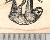 Sloth Rubber Stamp, Arboreal Three Toed Species of South and Central America, Small D26804 Wood Mounted