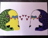Love Budgies card