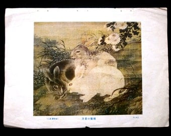 Vintage Japanese Print Rabbit Painting Magazine Cut Out