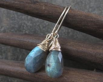 Blue Green Blaze Labradorite Briolette Earrings - Faceted Tear Drops -  Gold Filled Hook Earrings