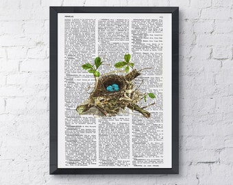 Summer Sale Robin Bird nest 2 print on Book page  Mixed media  art dictionary page printed ANI052