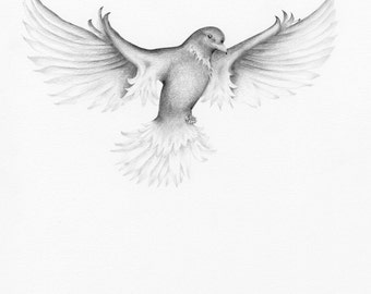 Bird Drawing Pencil Drawing Illustration of a Bird Giclee Fine Art Print of my Original Artwork Black and White Wall Art Home Decor