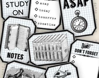 Study Labels - VDLARE0926