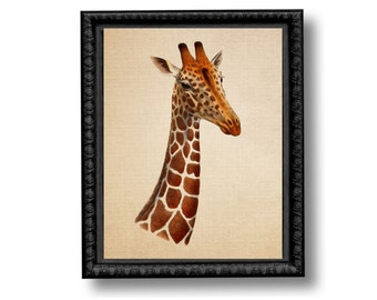Giraffe Vintage Style Art Print Natural History Brown Orange Sepia