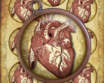 Steampunk Goth Victorian Anatomy - Antique Medical Illustration - Hearts - 2.5 inch Circles - Digital Collage, Printables, Instant Download