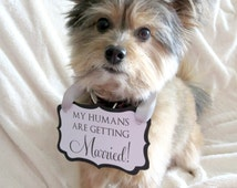 My Humans Are Getting Married! - Wedding / Engagement Sign for Your Dog - Available in 2 sizes and Custom Colors
