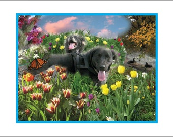 Happy Dogs in Magical Landscape (or, Magical Dogs in Happy Landscape)