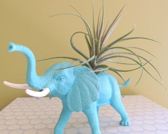 Turquoise Elephant Planter and Air Plant / Animal Planter / AIr Plant Container / Air Plants
