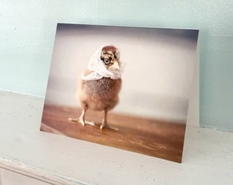 Greeting Card Set Chicken in White Kerchief Four Chicken Note Cards (4)