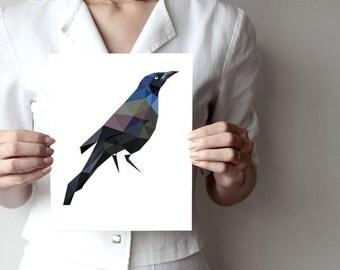 B31 - Grackle - art print - Geometric - Bird art -  grey, black - blue, dark brown