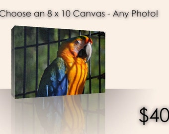 Choose an 8x10 Stretched Canvas