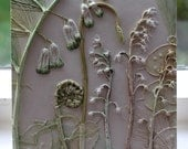 Solomon's Seal, Lily of the Valley, Honesty and Fern