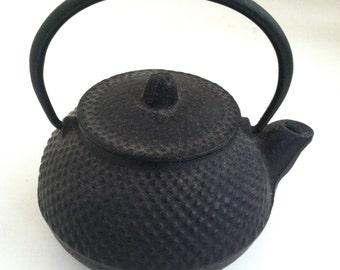 Tiny Tetsubin Teapot
