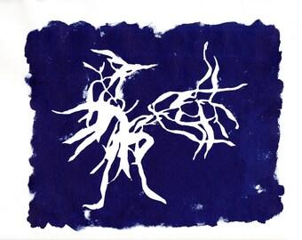 Tarragon Herb, Silkscreen, indigo reverse image, OOAK silkscreen in search image series, Strathmore 300 Series Printmaking paper