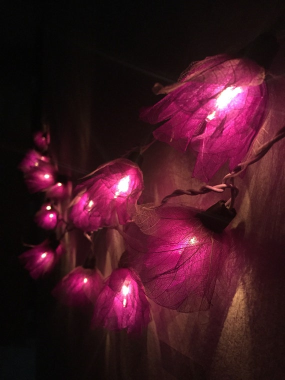 Purple Fairy String Lights : Fairy string lights 20 Purple Carnation Flower by fairylighting