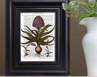 Flower painting - Vintage Hyacinth Print - Boho wall decor Bedroom wall decor Flower print Dictionary art print Book page Country home decor