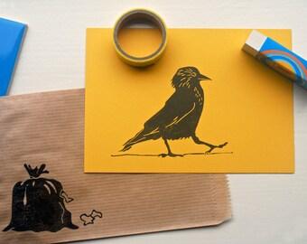 Kaart met envelop, kauw, post card with envelope, daw, Postkarte mit Briefumschlag, Dohle