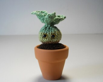 Green Sprout - Knitted Amigurumi - Hand Knit Miniature Potted Plant