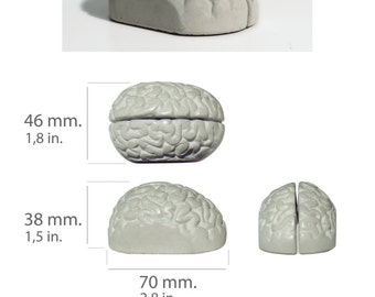 Giftbox containing eight concrete memo holders shaped like a brain