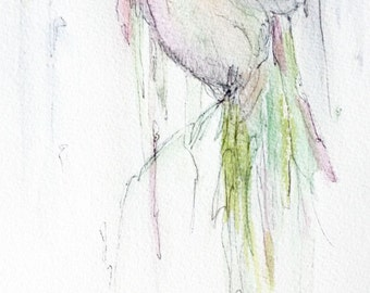Watercolor and Ink Giclee Print of Hummingbird