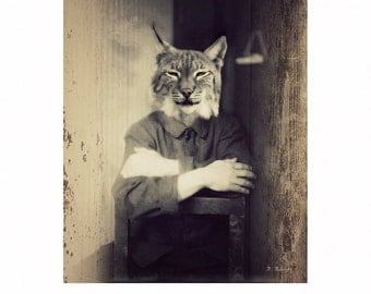 """Bobcat Art Print Animal Art Fine Art Photography Animals In Clothes Rustic Home Decor (3 Sizes Available) """"Appalachian Scenes No. 5"""""""