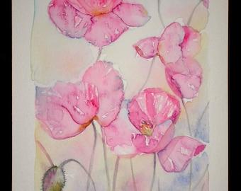 ART Watercolor painting of PINK POPPIES original art artist Amanda Hawkins 14 x22cm floral botanical artwork cottage garden country flower