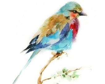 Lilac Bird Watercolor Painting Art Print, Bird Art Watercolour Painting Art, Wall Art