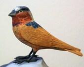 Wood Bird; Bird Lover; Bird Sculpture; Wooden Bird; Bird Lover Gift; Hand Carved Bird; Bird Carving; Wood Carved Bird; Swift Bird