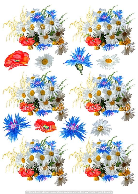 fliesenaufkleber kachelaufkleber aquarell kornblumen bord re kacheldekor 6 stk ebay. Black Bedroom Furniture Sets. Home Design Ideas