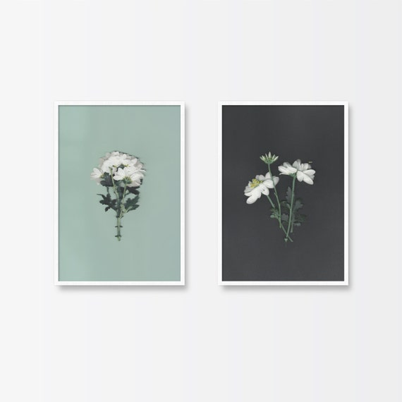 Wall Art Prints Download : Printable art botanical print set of two flower prints
