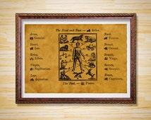 Astrology decor Astronomy poster Zodiac print