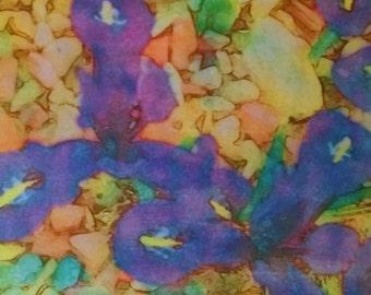 Colorful floral wall art, Iris Crocus [8.5 square]