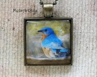 Bluebird of Happiness Nature Woodland Wildlife Photo Pendant Necklace