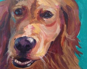 Custom Pet Portrait 50cm x60cm