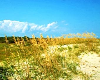 Beach Art Print, Nature Wall Decor, St. Simons Island Beach, Summer Beach, Sand Dunes, Georgia Islands, Blue Sky, Fine Art Photography