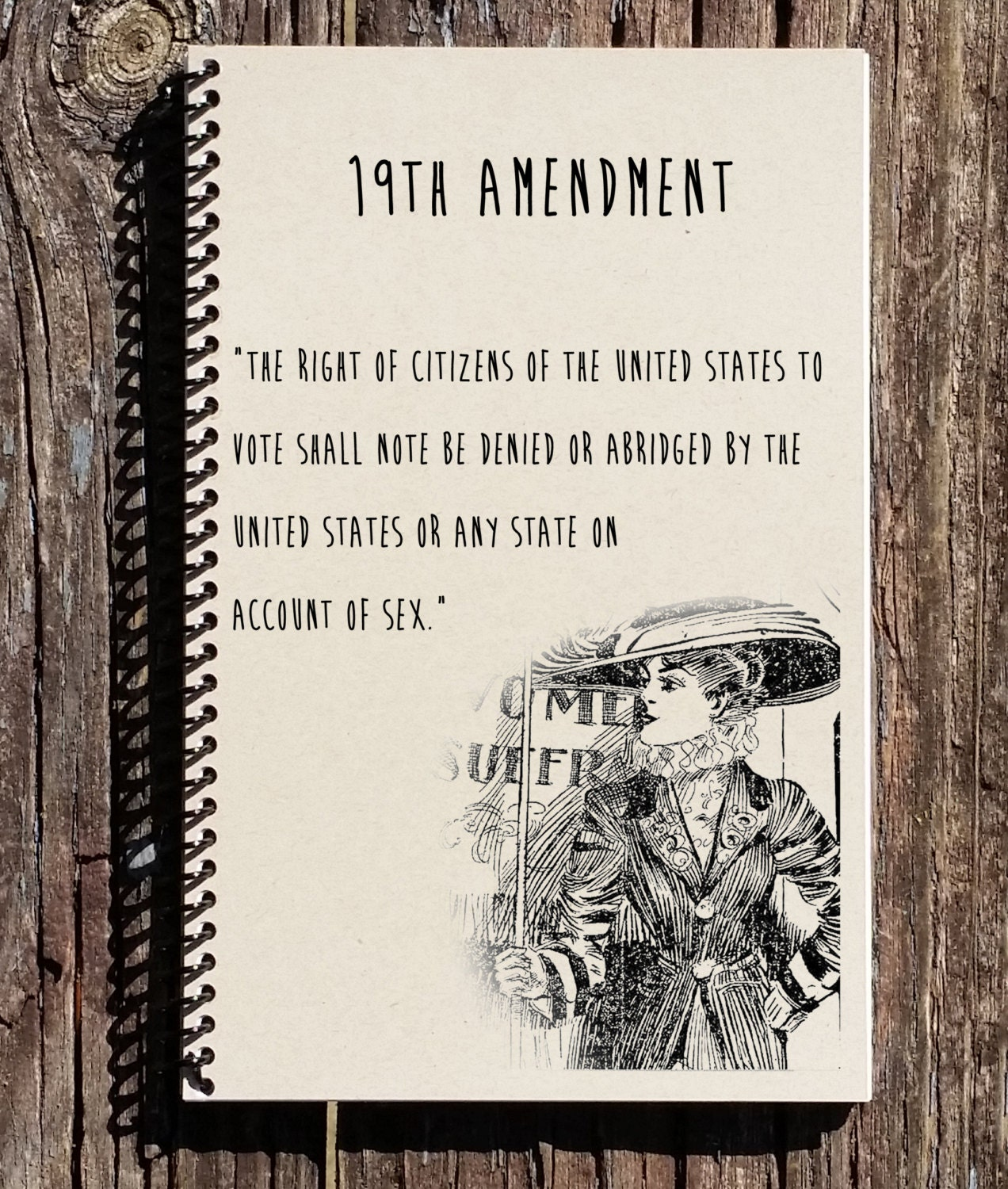 reasoning behind the 19th amendment How much impact did woman suffragists have on the 14th amendment how was it that its provisions did not give women the right to vote what did the 15th amendment add that wasn't in the 14th.