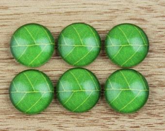 10 pcs 12mm Photo Glass Cabochons Cabs, Image Cabochons--513-4