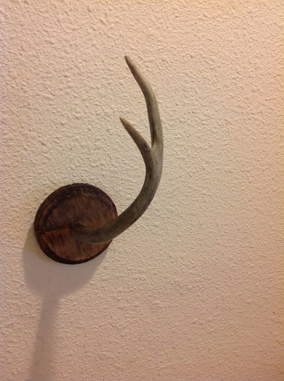 Items similar to antler jewelry key holder on etsy - Antler key rack ...