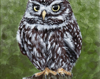 Little Owl Original Acrylic Painting Deep Edge Canvas 20 x 25cm